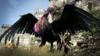 Dragon-s-Dogma-1.jpg